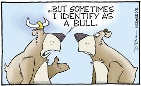 Bull market101
